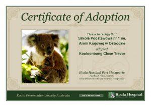 Koala Adoption Certificate 10 1
