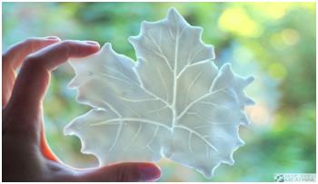 masa porcelanowa lisc
